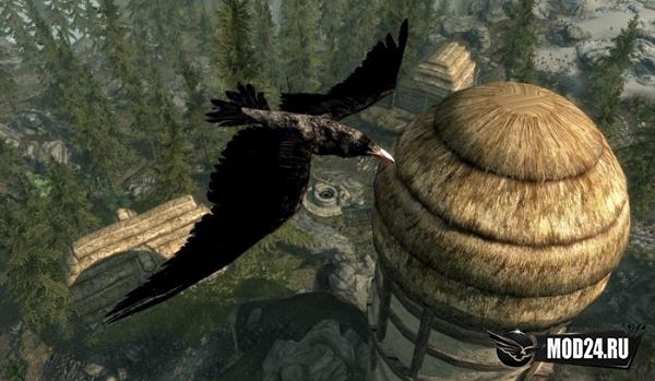 Птицы для Скайрим